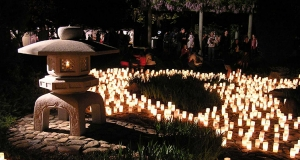 Nara Park comes alive with lanterns every year at the Candle Festival