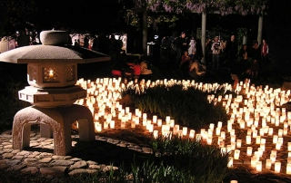 Lanterns at the Canberra Nara Candle Festival