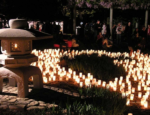 Canberra Nara Candle Festival 2016